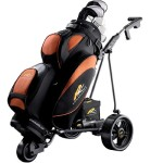 cart bag golftas